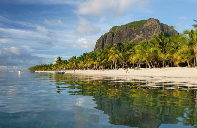 Late afternoon reflections of Le Morne Brabant and palm trees in the sea, Le Morne Brabant Peninsula, south west Mauritius, Indian Ocean, Africa