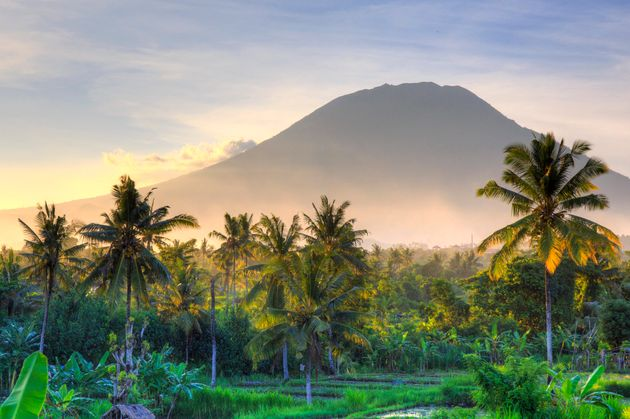 Indonesia, Bali, East Bali, Amlapura, Rice Fields and Gunung Agung Volcano