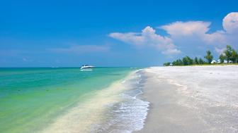 Tropical Beach - Sanibel Island