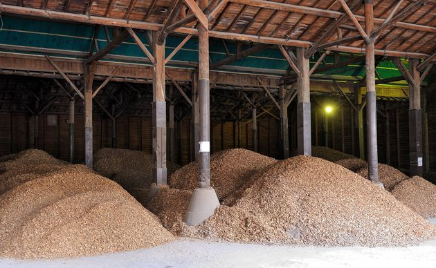 Chicory roots are stored at the 'Leroux chicoree' chicory processing factory, on April 5, 2013 in Orchies....