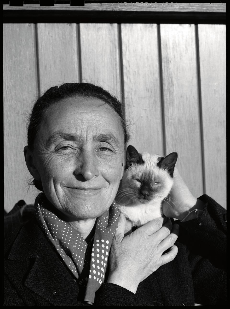 Georgia O'Keeffe and her cat. Photograph by John Candelario. Courtesy Palace of the Governors Photo Archives (NMHM/DCA), 1656