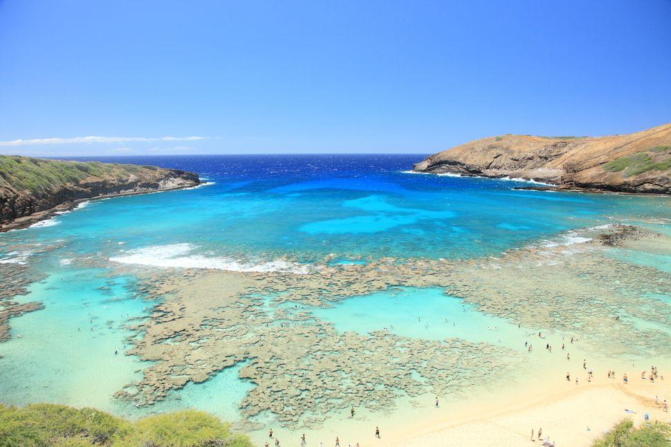 "This <a href=""http://www.gohawaii.com/en/oahu/regions-neighborhoods/honolulu/hanauma-bay/"">stunning, coral-dotted nature pres"
