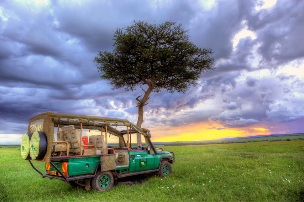 """Take a safari sans phone,and <a href=""""http://www.huffingtonpost.com/vayable/7-places-where-you-can-st_b_4632810.html"""">w"""