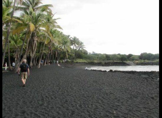Home of the Hawaiian Green Sea Turtles