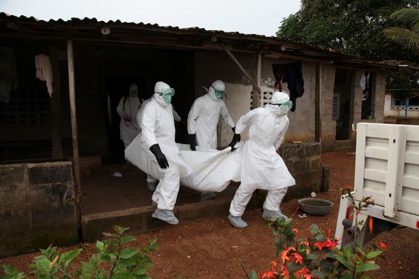Liberian nurses carry the body of an Ebola victim from a house for burial in the Banjor Community on the outskirts of Monrovi