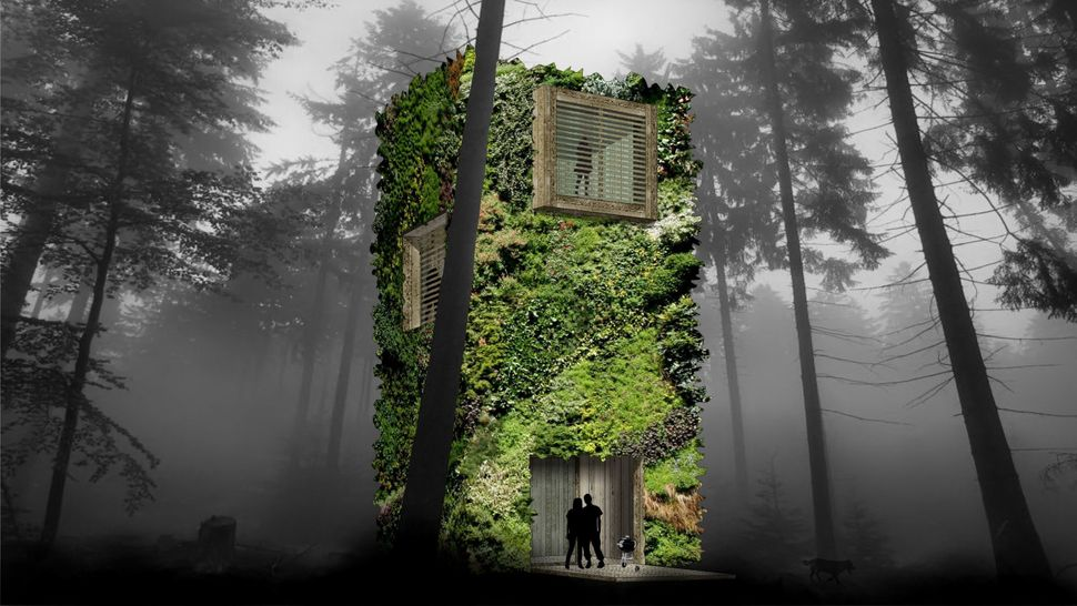 Future Tree Houses these epic treehouses of the future blend in seamlessly with their