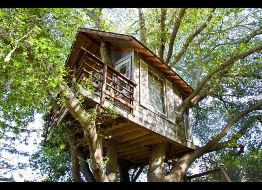 AirBnB's most popular tree house is in Burlingame, California, overlooking San Francisco Bay. According to the site, co-owner
