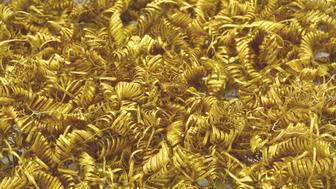 The approximately 2,000 gold spirals from Boeslunde in all their splendor.