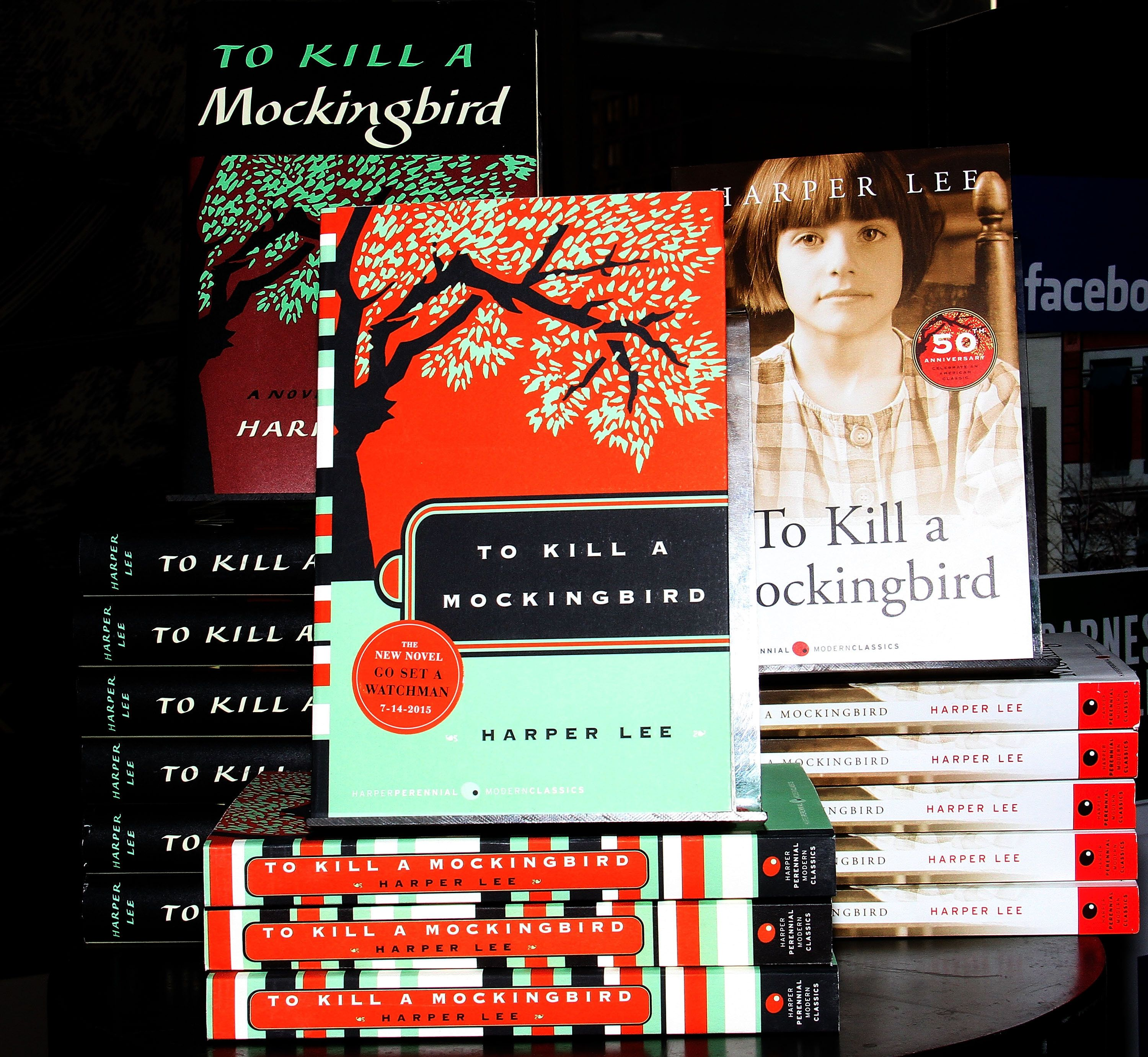 to kill a mocking bird the To kill a mockingbird by harper lee was written in the 1950s and published mid-1960 we shall explore the plot, characters and themes in the book the symbolism relied on by the author shall be addressed according to its relevance to the plot.