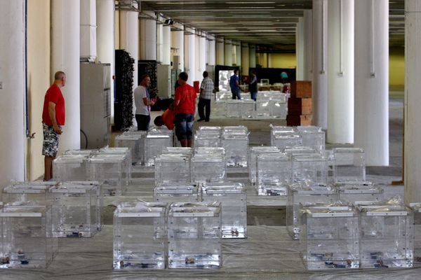 Electoral workers prepare ballot boxes in a warehouse in Thessaloniki, Greece, on July 2, 2015, ahead of Sunday's economic re