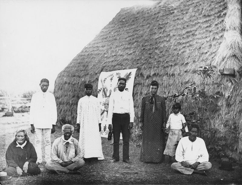 A group of Native Hawaiian men, women and a girl, standing and sitting in front of a thatched dwelling on the island of Niihau in the 1880s.