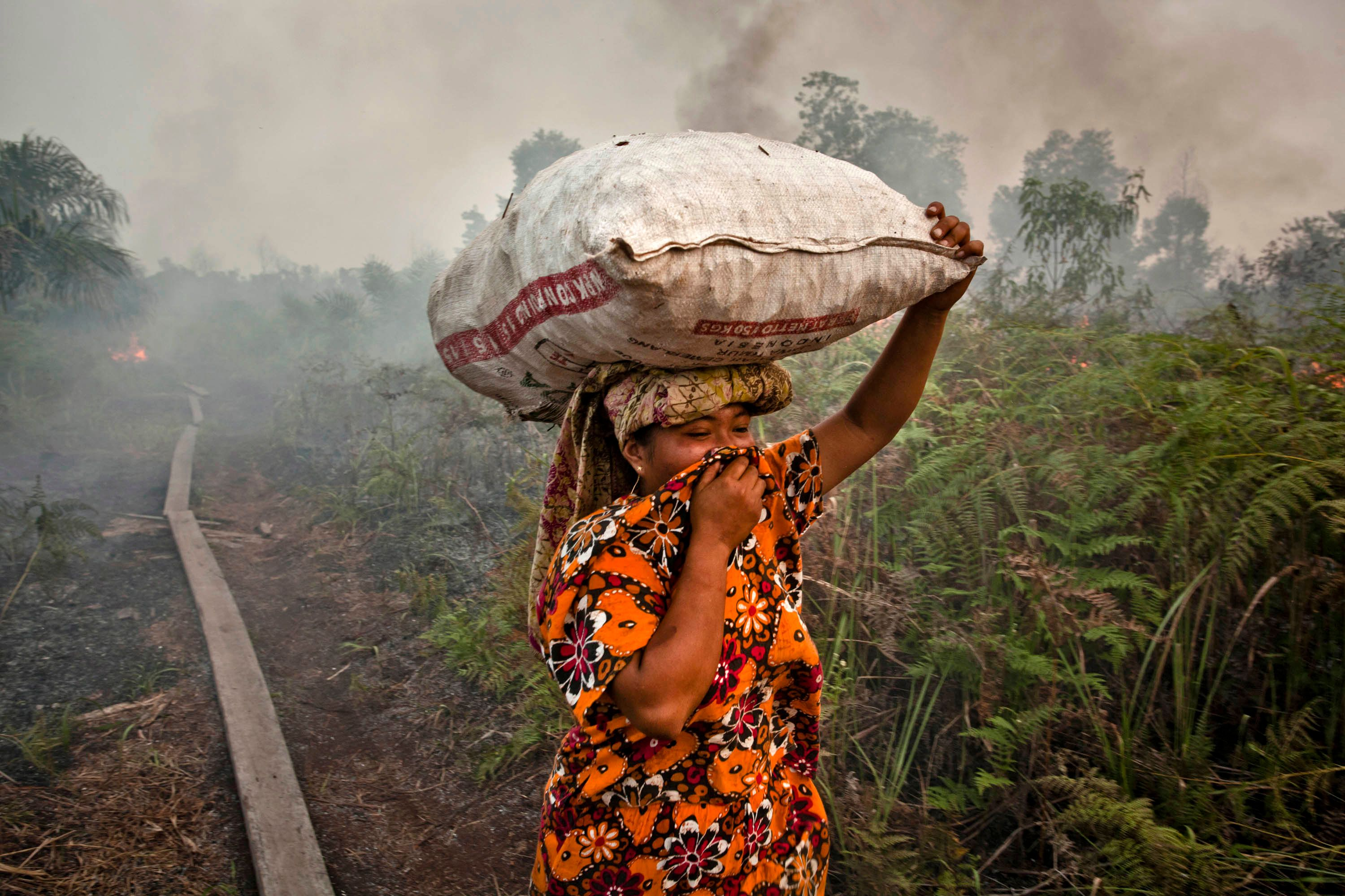 A woman walks through haze as a forest fire burns bushes and fields on June 27, 2013 in Siak Regency, Riau Province, Indonesi