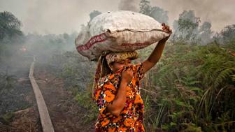 <p>A woman walks through haze as a forest fire burns bushes and fields on June 27, 2013 in Siak Regency, Riau Province, Indonesia. The fires on Sumatra have caused record smog in Malaysia and Singapore. Sumatra has stepped up efforts to fight the fires to relieve the conditions.</p>