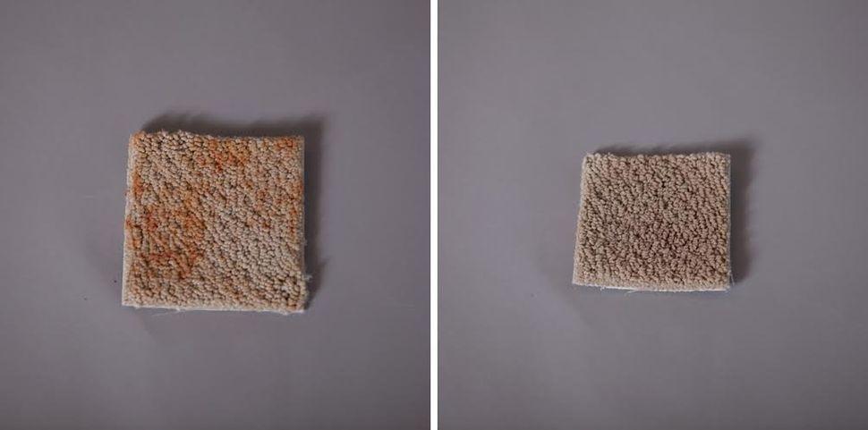 We tried 7 diy carpet cleaning tricks heres what worked huffpost tiara chiaramonte solutioingenieria Gallery