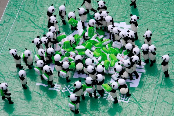 ABA PREFECTURE, CHINA - JULY 05: (CHINA OUT) Aerial view of people, wearing panda costumes with mahjong tiles, playing mahjon