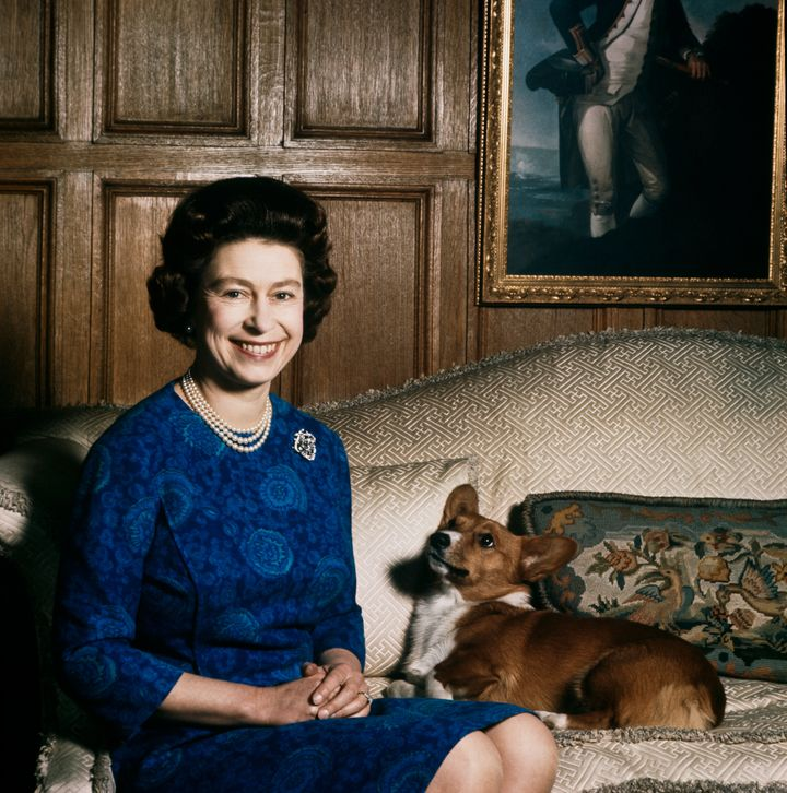 Queen Elizabeth II with one of her corgis at Sandringham, 1970. (Fox Photos/Hulton Archive/Getty Images)