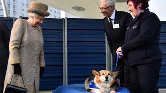 LONDON, ENGLAND - MARCH 17: Britain's Queen Elizabeth II looks at a Corgi dog as British television presenter Paul O'Grady (2nd R) looks on during the opening of the new Mary Tealby dog kennels at Battersea Dogs and Cats Home in London on March 17, 2015.  (Photo by Ben Stansall - WPA Pool/Getty Images)