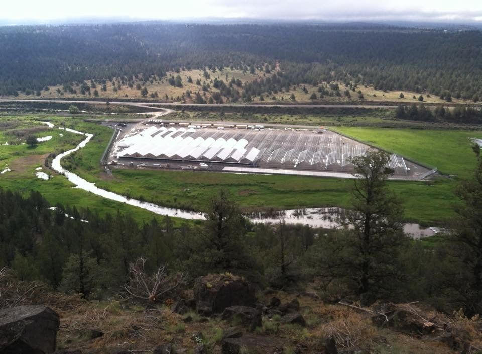 The Pit River Tribe's XL Ranch marijuana grow operation, as seen from a hill above the facilities. Below is the Pit River, an