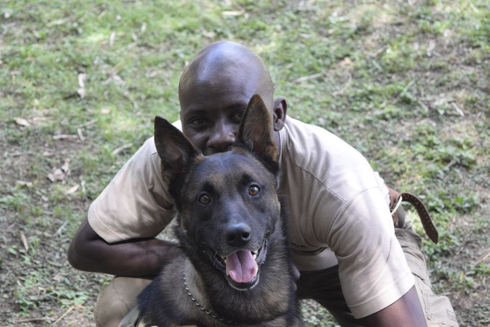Handlers have a passion for conservation and forge strong bonds with their dogs.