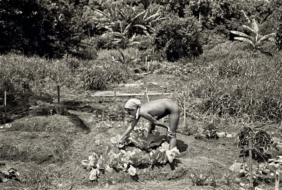 """Fotky z """"hippies epochy"""" - 70. léta: Sex, drogy, nespoutaná láska a svoboda"""