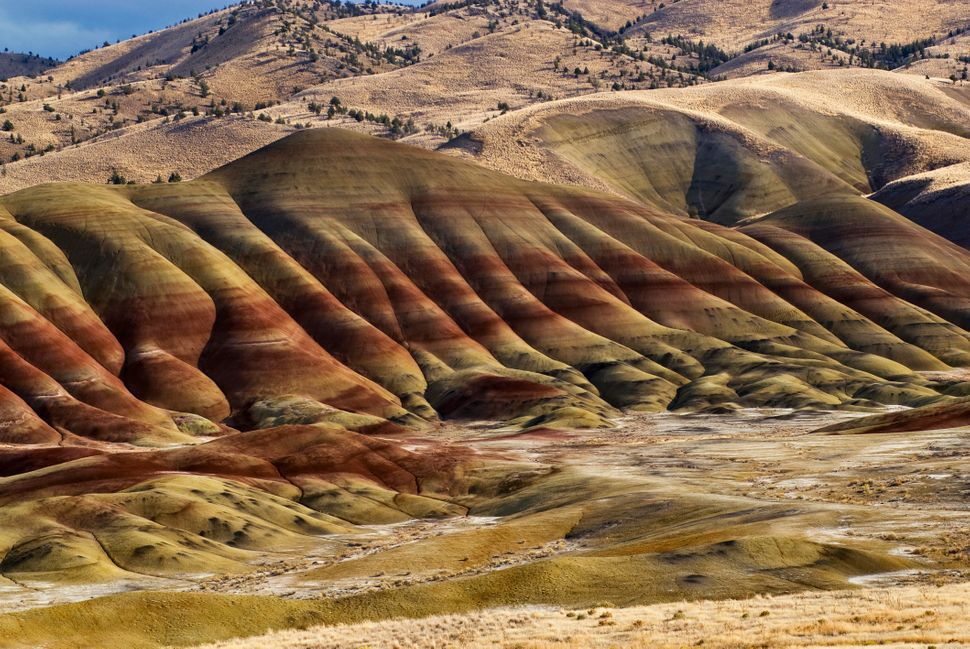 """Theserock formations -- with fossils galore --span<a href=""""http://www.nps.gov/joda/index.htm"""">more than 40"""