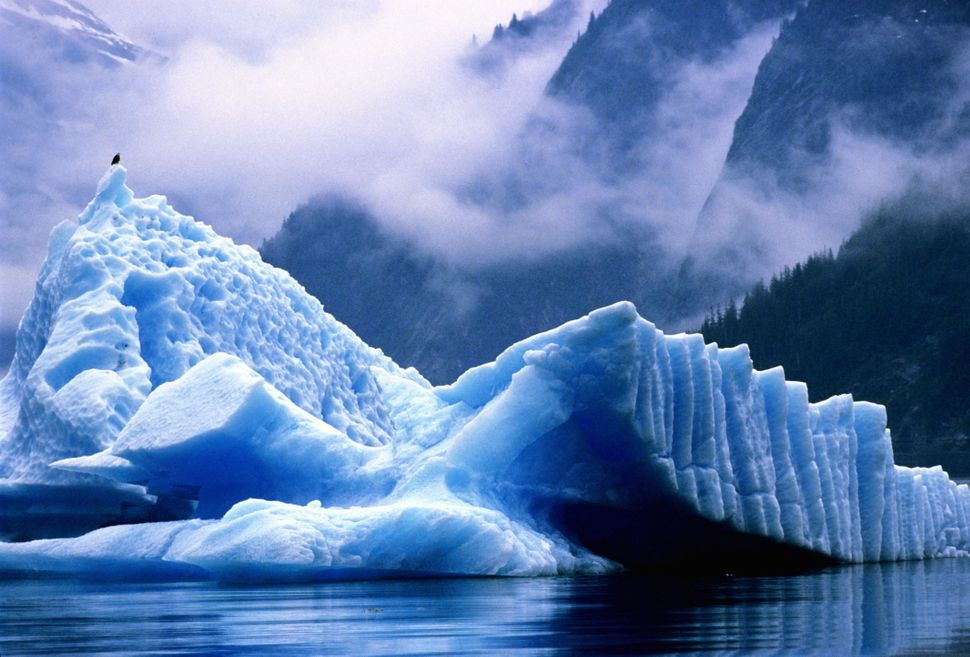 """<a href=""""http://www.visit-ketchikan.com/Things-To-Do/Tours-Sightseeing/Misty-Fjords.aspx"""">Hop a boat cruise or take a plane</"""