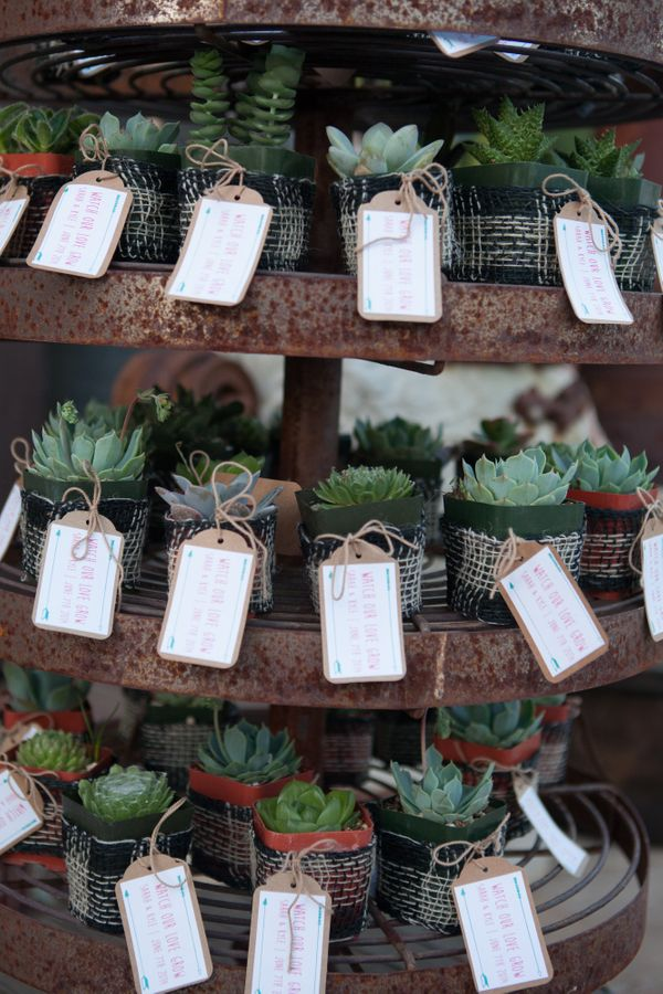 Wedding Favors Ideas For Guests : 24 Wedding Favor Ideas That Dont Suck