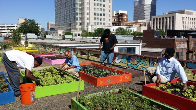 Homeless People In Atlanta Plant Organic Garden, Provide Food For Shelter