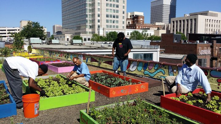 <em>Residents of the Metro Atlanta Task Force plant on the shelter's rooftop garden.</em>