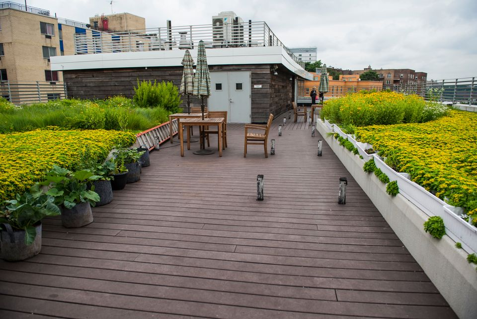 NEW YORK, NY - JUNE 18: A rooftop garden at The Jericho Project's Kingsbridge Terrace supporting housing complex for veterans