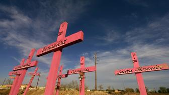 "<p>&nbsp;</p> <p class=""p1"">Wooden crosses are seen in the place where the corpses of eight murdered women were found in 2001 in Ciudad Juarez, Mexico.</p>"