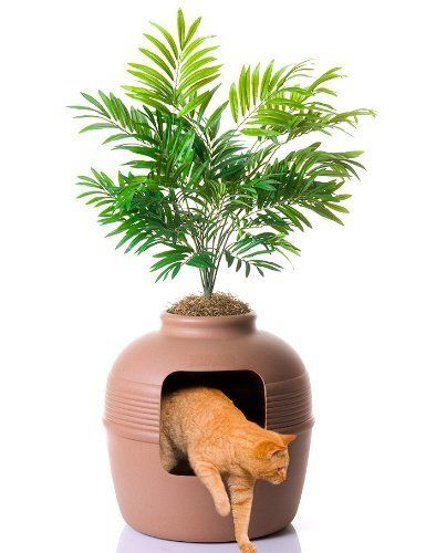 8 Handsome Ways To Hide Your Cats Litter Box Huffpost Life