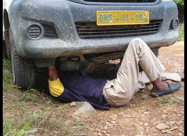 Photo credit: Jamaica Corker/WHO 