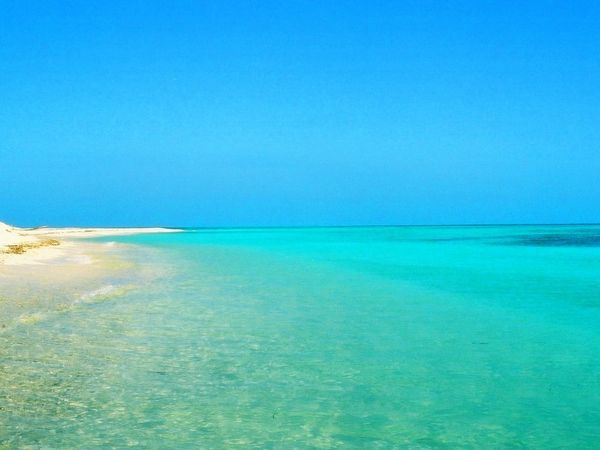 3 things on a deserted island essay Imagine being stranded on a desert island what would you want to have with you the most  top 5 things to bring to a desert island.