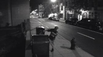 Video purports to show HitchBOT's demise