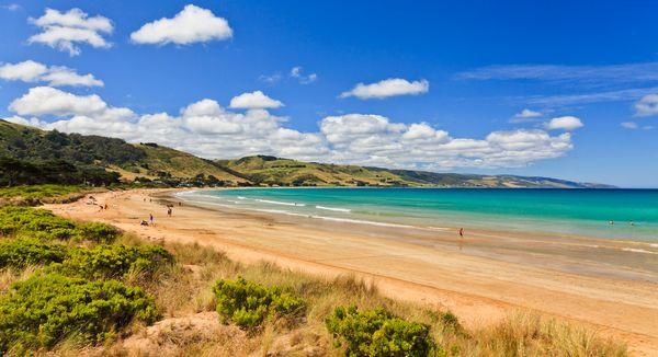 "Take a surf trip down Australia's <a href=""http://www.visitvictoria.com/Regions/Great-Ocean-Road/Destinations/Apollo-Bay"">Gre"