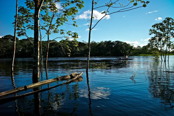 While many know the country as a tropical paradise thanks to its location near the Equator, its rich ecosystems are poss