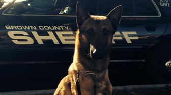 <p>Wix, the 3-year-old K-9 who died in Wisconsin this week after being left in a squad car.&nbsp;</p>