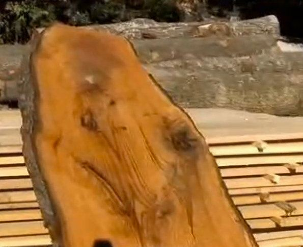 "A lumber yard owner in Tennessee was crying Hal-log-lejuah after he saw this image on the inside of a tree trunk.  <a href=""h"