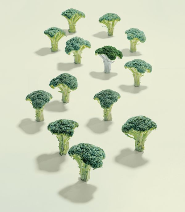 "Cruciferous vegetables such asbroccoli contain cancer-preventing<a href=""http://www.ncbi.nlm.nih.gov/pubmed/23902"