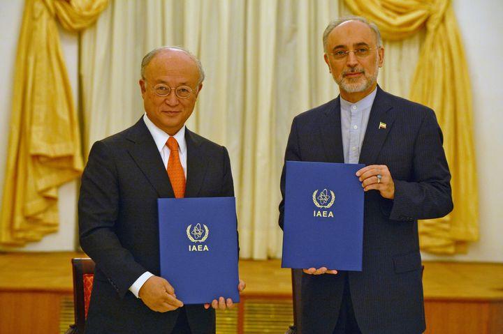 Director General of the International Atomic Energy Agency (IAEA) Yukiva Amano and head of Iran's Atomic Energy Organization