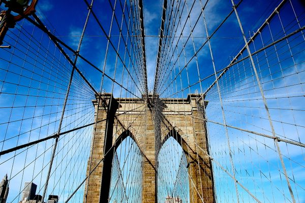 Tourists need to spend way more time in Brooklyn and ALL the outer boroughs. That's where all the best food is!