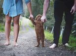 Tired Of Baby Questions, This Couple Took Pics With Their Pup Instead