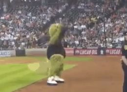 Houston Astros Mascot Resurrects The 'Single Ladies' Dance In Brilliant Performance