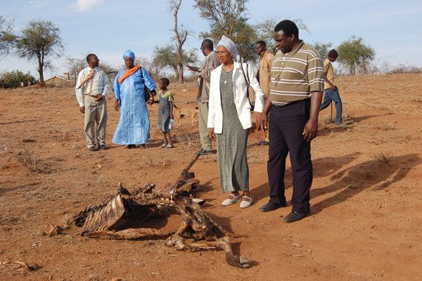 A delegation of Lutheran Church leaders in Africa look at the drying corpse of a cow in the Kajiado area of southeastern Keny