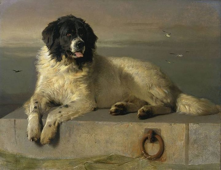 "<a href=""https://en.wikipedia.org/wiki/File:A_Distinguished_Member_of_the_Humane_Society_by_Sir_Edwin_Landseer.jpg"">Sir Edwin"