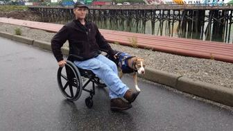 Jericho is a 5-year-old service dog who's change the life of his wheelchair-bound owner.