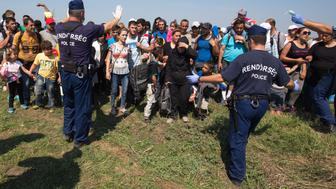 <p>Hungarian police officers control migrants who had just crossed the border from Serbia into Hungary near Szeged, Hungary, on Aug. 28, 2015.</p>