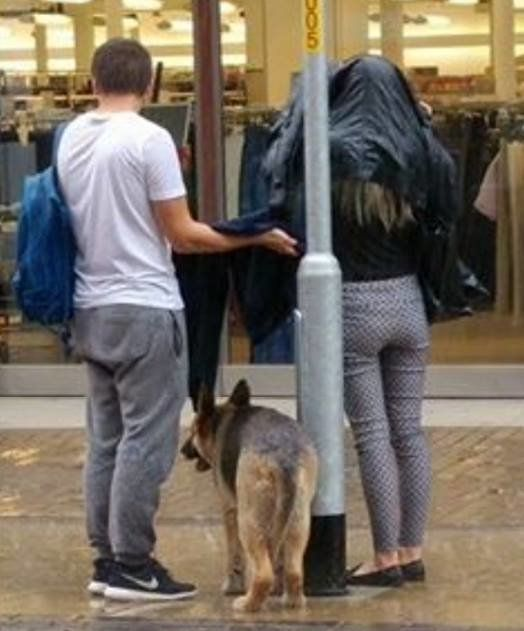 Two kindhearted strangers shelter a dog during a rainstorm.