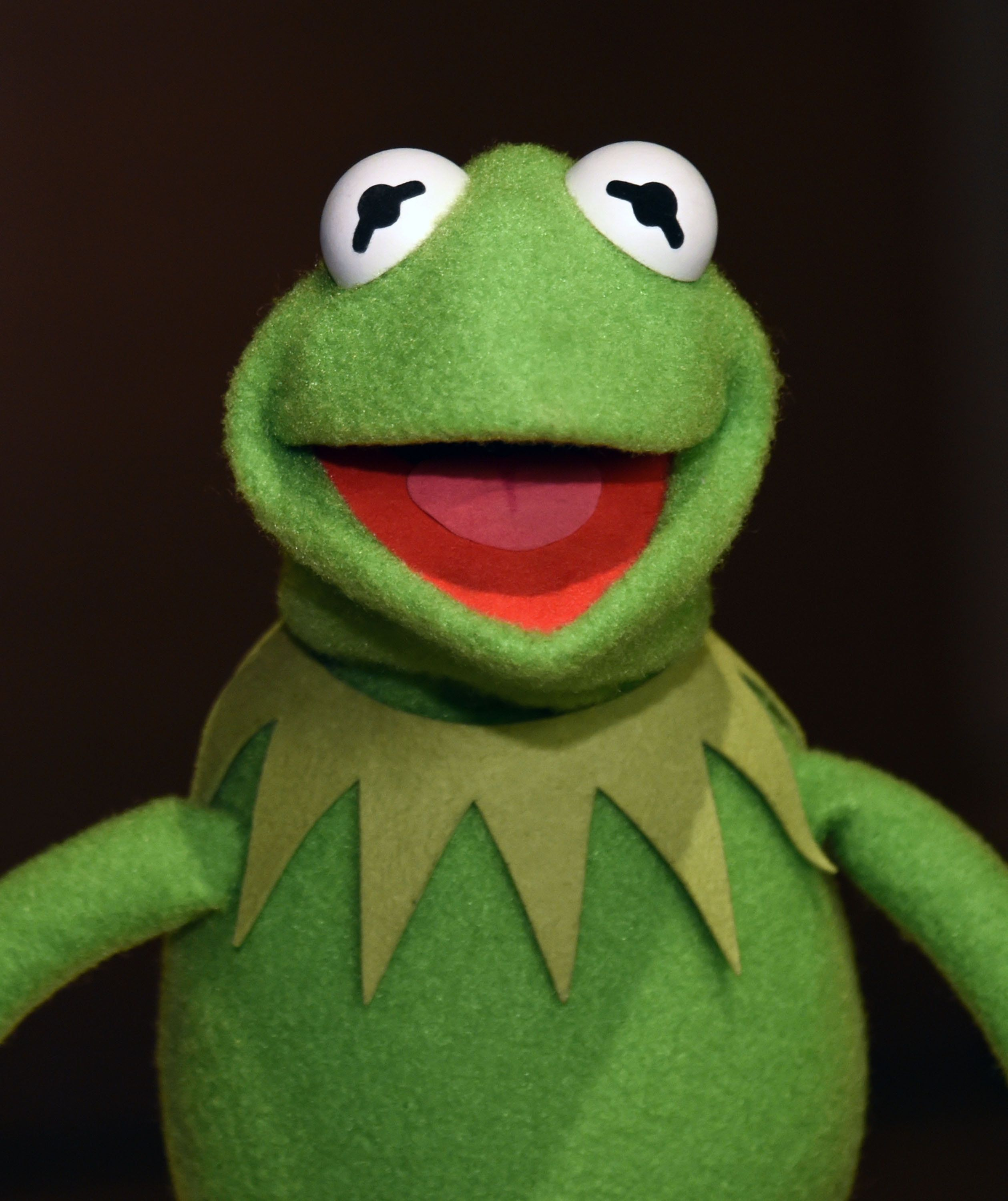 NEW YORK, NY - JUNE 04:  Kermit the Frog poses during Brooklyn Museum's Sackler Center First Awards at Brooklyn Museum on June 4, 2015 in New York City.  (Photo by Ilya S. Savenok/Getty Images)
